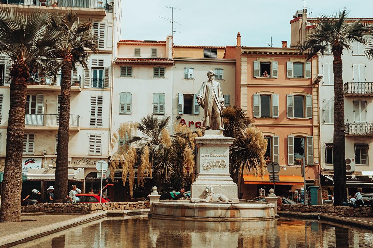 Картинки Франция Памятники Cannes, Lord Brougham Пруд Пальмы Города пальм пальма город