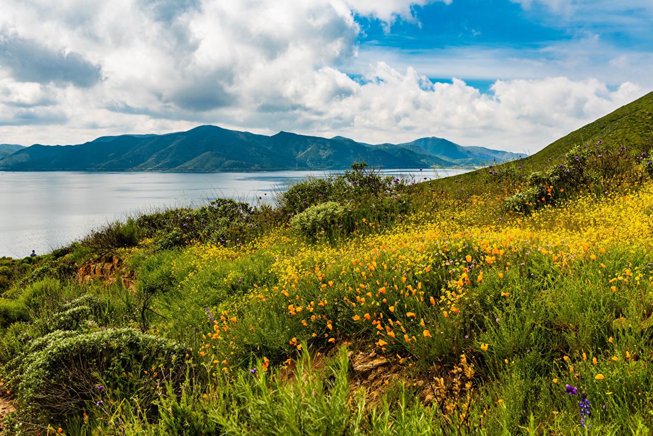 Фотография калифорнии США Hemet Горы Природа берег Трава Калифорния штаты америка гора траве Побережье