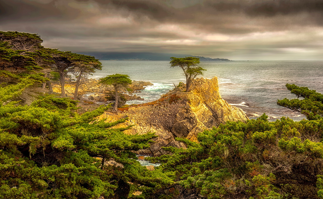 Фотографии калифорнии США HDR Утес Природа Побережье Облака Деревья Калифорния штаты америка HDRI Скала скале скалы берег дерево облако дерева облачно деревьев