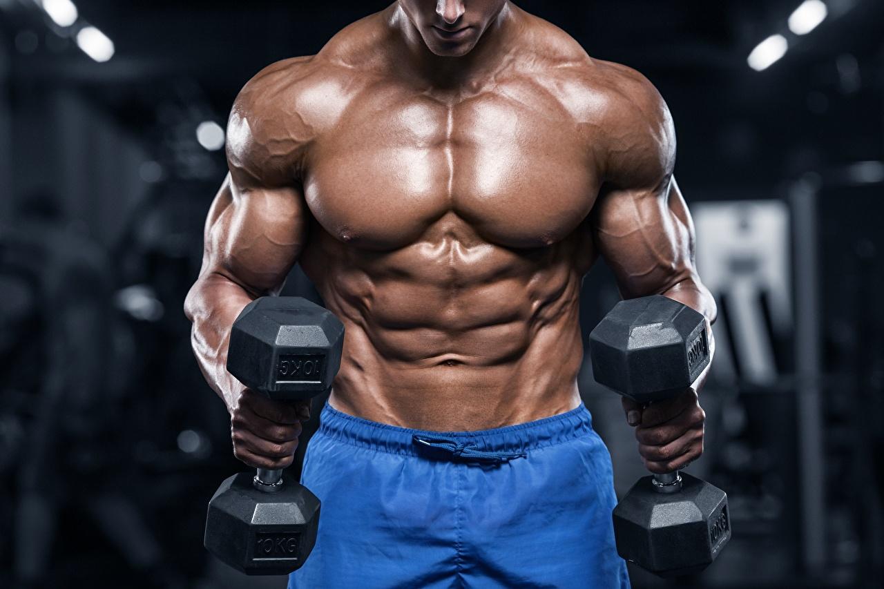 Картинки Мышцы мужчина гантеля спортивные Бодибилдинг рука Мужчины мускулы Спорт Гантели гантель гантелей гантелями спортивная спортивный Руки