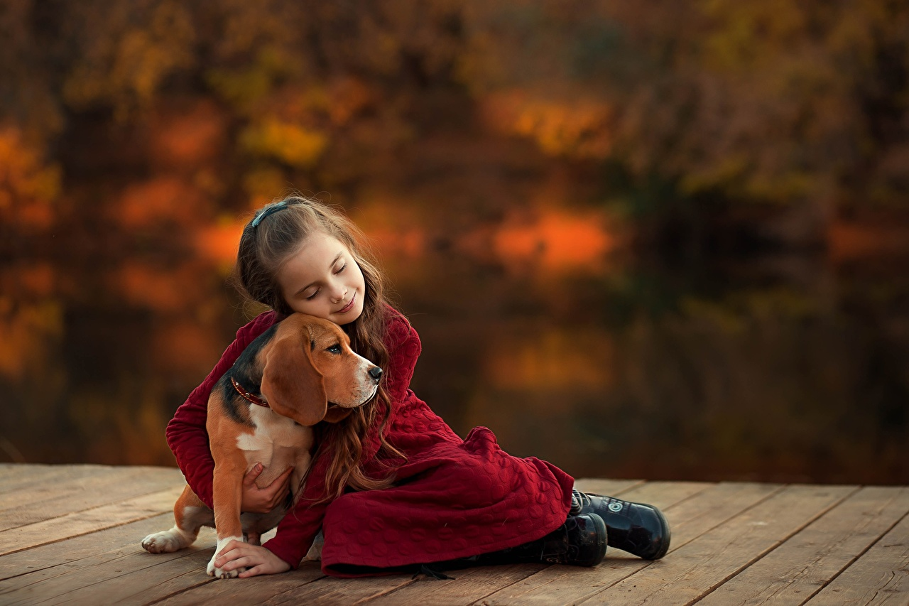 Фото бигля девочка Собаки Ekaterina Borisova Дети Объятие животное Бигль Девочки собака ребёнок обнимает обнимаются Животные