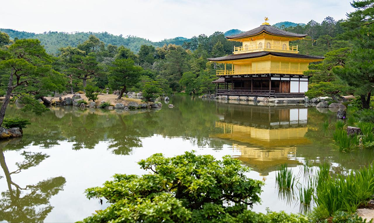 Картинка Киото Япония Kinkaku-ji Пруд Храмы дерево Города храм город дерева Деревья деревьев