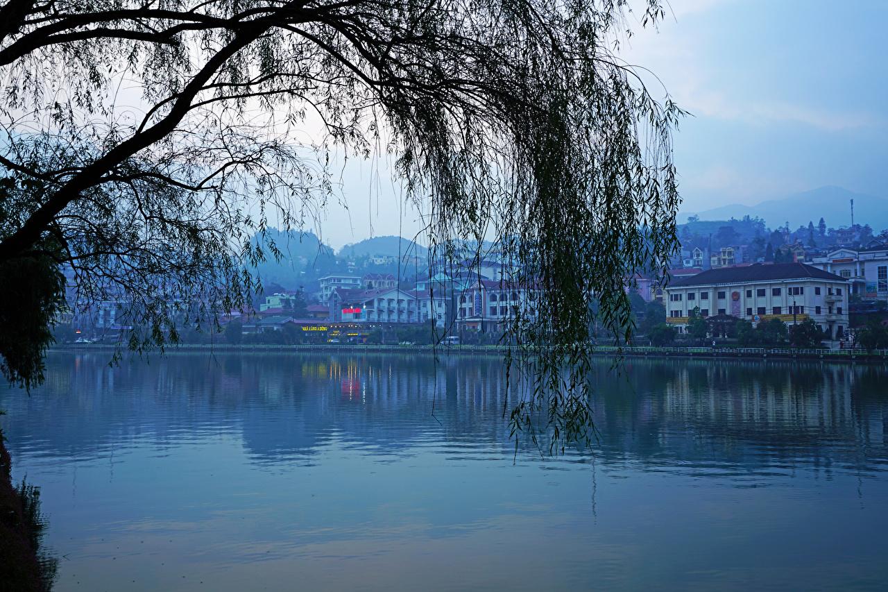 Фото Вьетнам Lao Cai Реки Вечер на ветке город Здания река Ветки ветка ветвь речка Дома Города