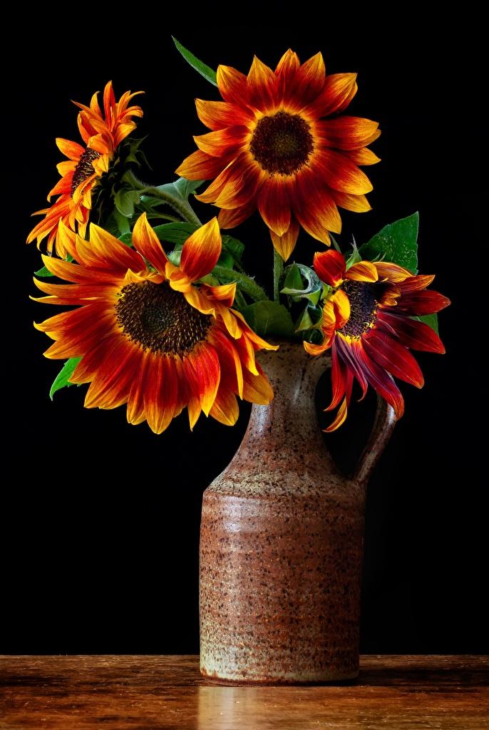 Фотография букет цветок Подсолнухи вазы  для мобильного телефона Букеты Цветы Подсолнечник вазе Ваза