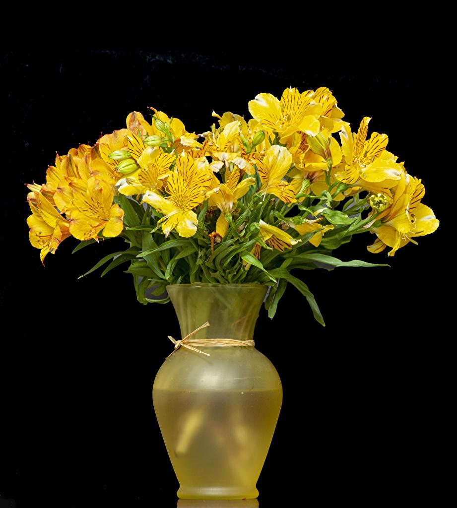 Обои для рабочего стола желтых цветок Альстрёмерия Ваза на черном фоне желтая желтые Желтый Цветы вазе вазы Черный фон