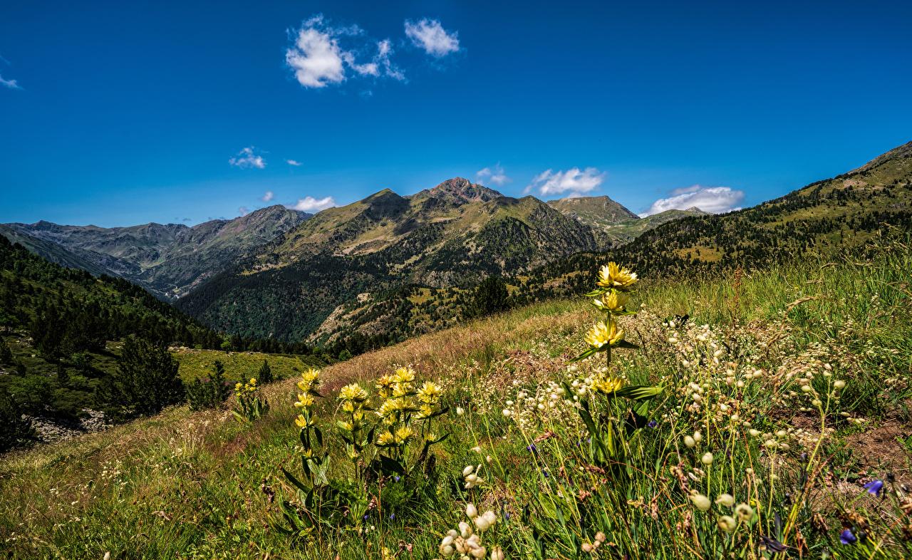 Фотография Андорра Ordino, Pyrenees гора Природа Луга Небо траве Горы Трава