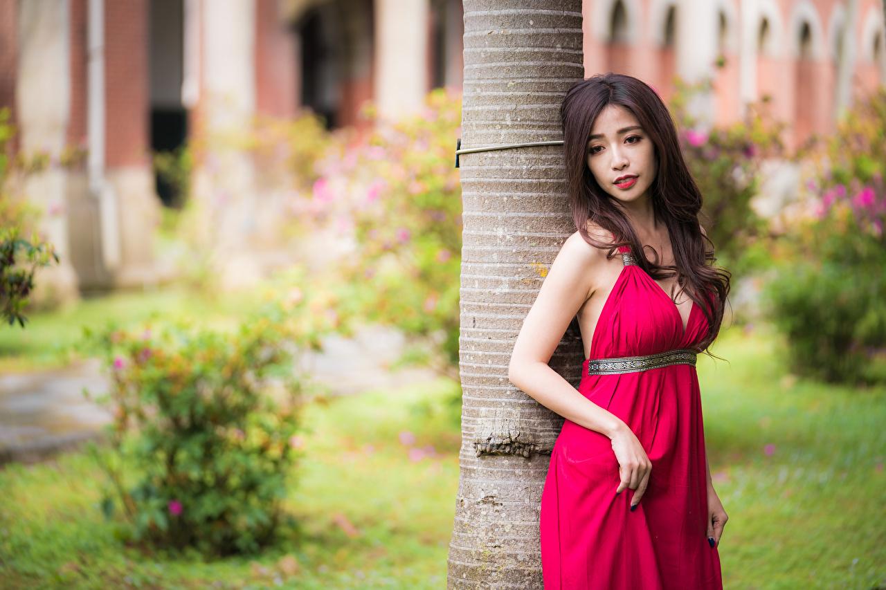 Картинка Шатенка Поза Девушки азиатка Руки Платье шатенки позирует девушка молодая женщина молодые женщины Азиаты азиатки рука платья