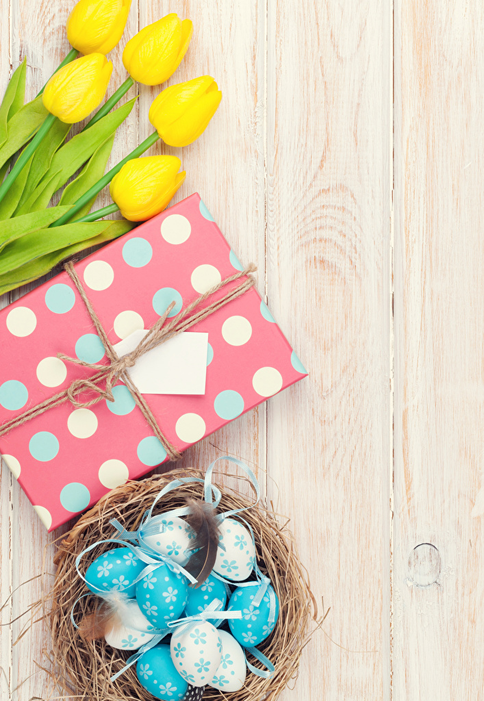 Фото Пасха Яйца Гнездо желтых тюльпан цветок подарков Еда Доски  для мобильного телефона яиц яйцо яйцами желтая желтые Желтый гнезда гнезде Тюльпаны Цветы подарок Подарки Пища Продукты питания