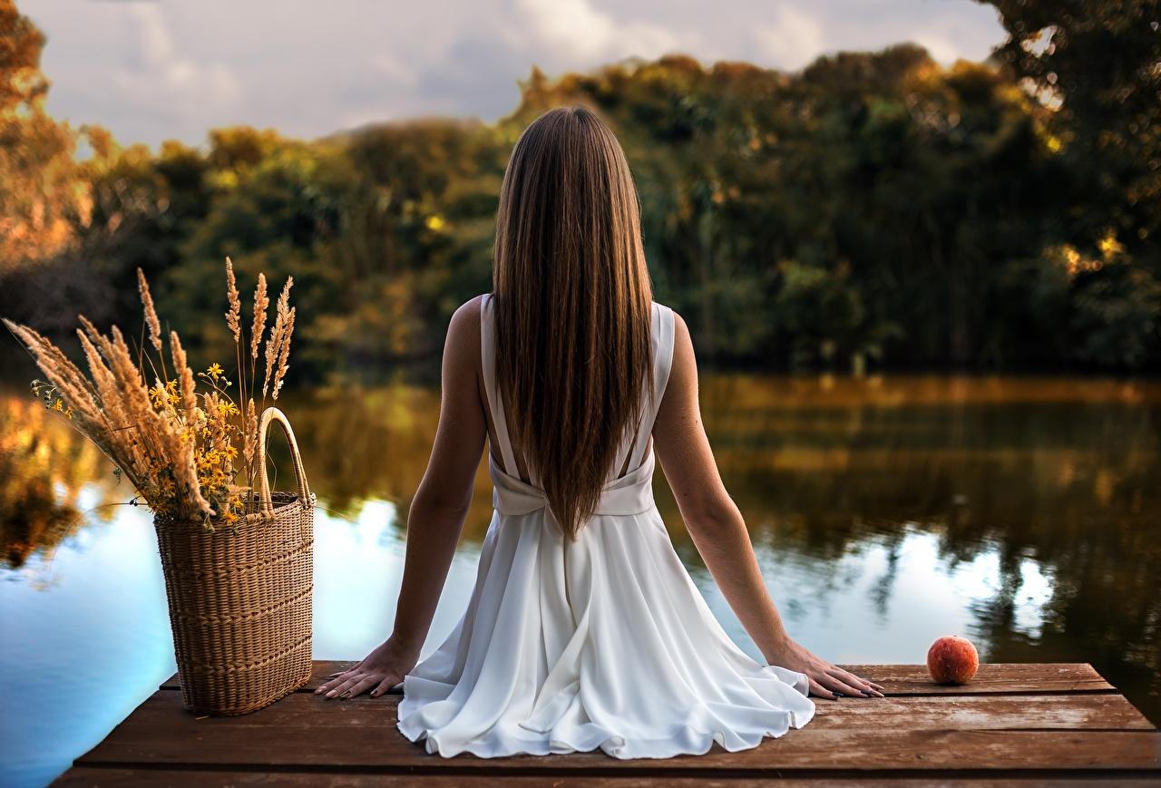 Картинки Шатенка Sergii Dudko девушка Озеро сидя Сумка Пристань вид сзади шатенки Девушки молодые женщины молодая женщина Пирсы Сзади Сидит сидящие Причалы