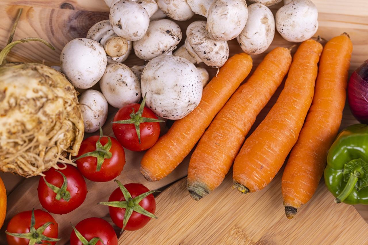 Фотография Томаты морковка Грибы Пища Морковь Помидоры Еда Продукты питания