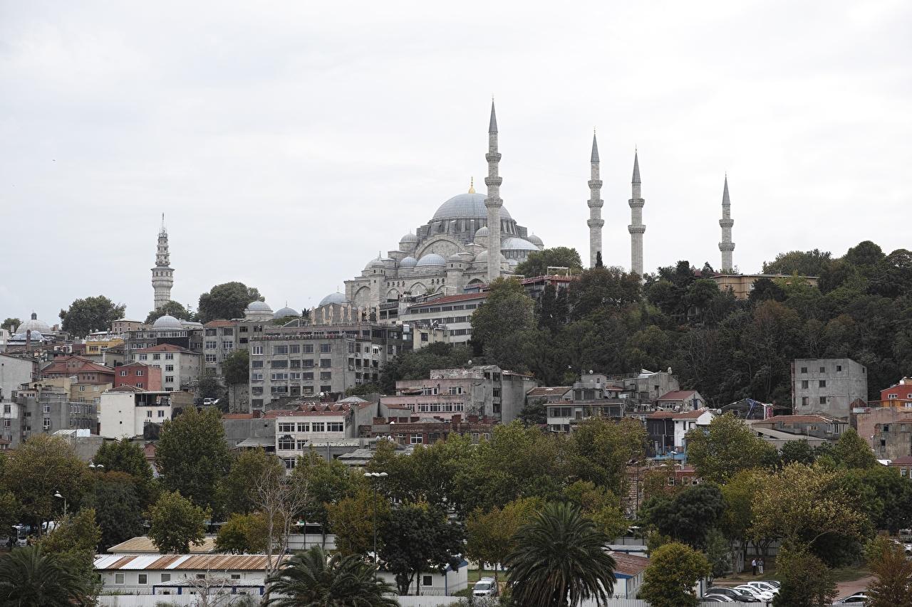 Фотографии Стамбул Мечеть Турция Sultanahmet Дома Города дерева город Здания дерево Деревья деревьев