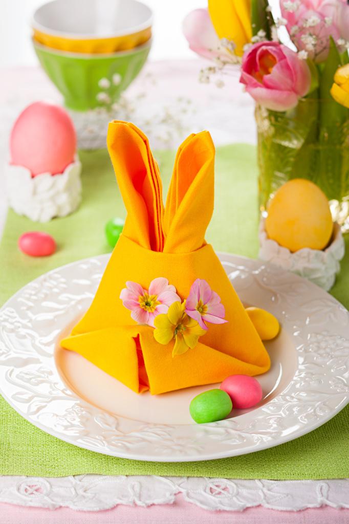 Фото Пасха яиц Тарелка Праздники Дизайн  для мобильного телефона яйцо Яйца яйцами тарелке дизайна