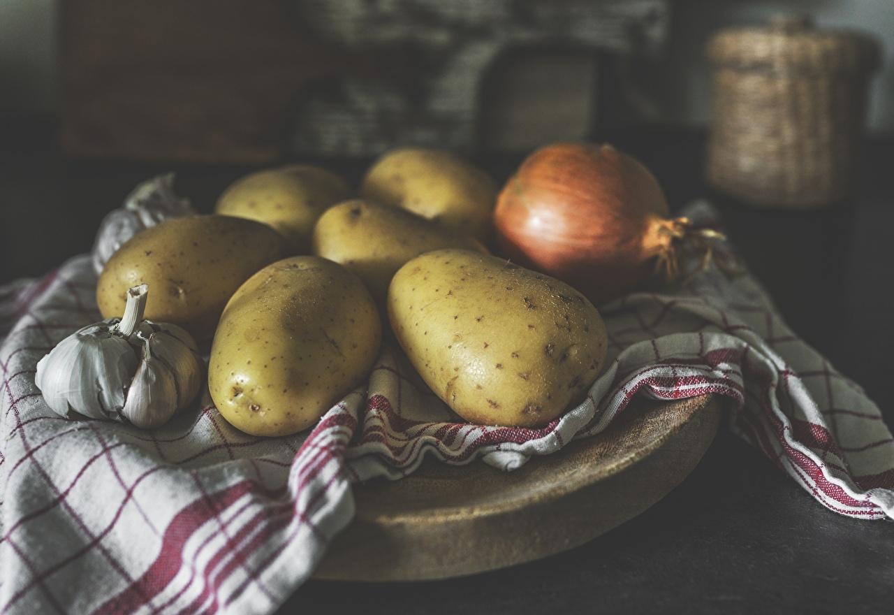 Фотография Размытый фон Картофель Лук репчатый Чеснок Продукты питания боке картошка Еда Пища