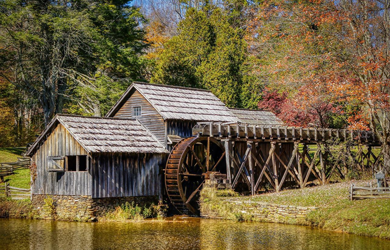Фото америка Водяная мельница Mabry Mill Осень Природа Леса США штаты осенние лес