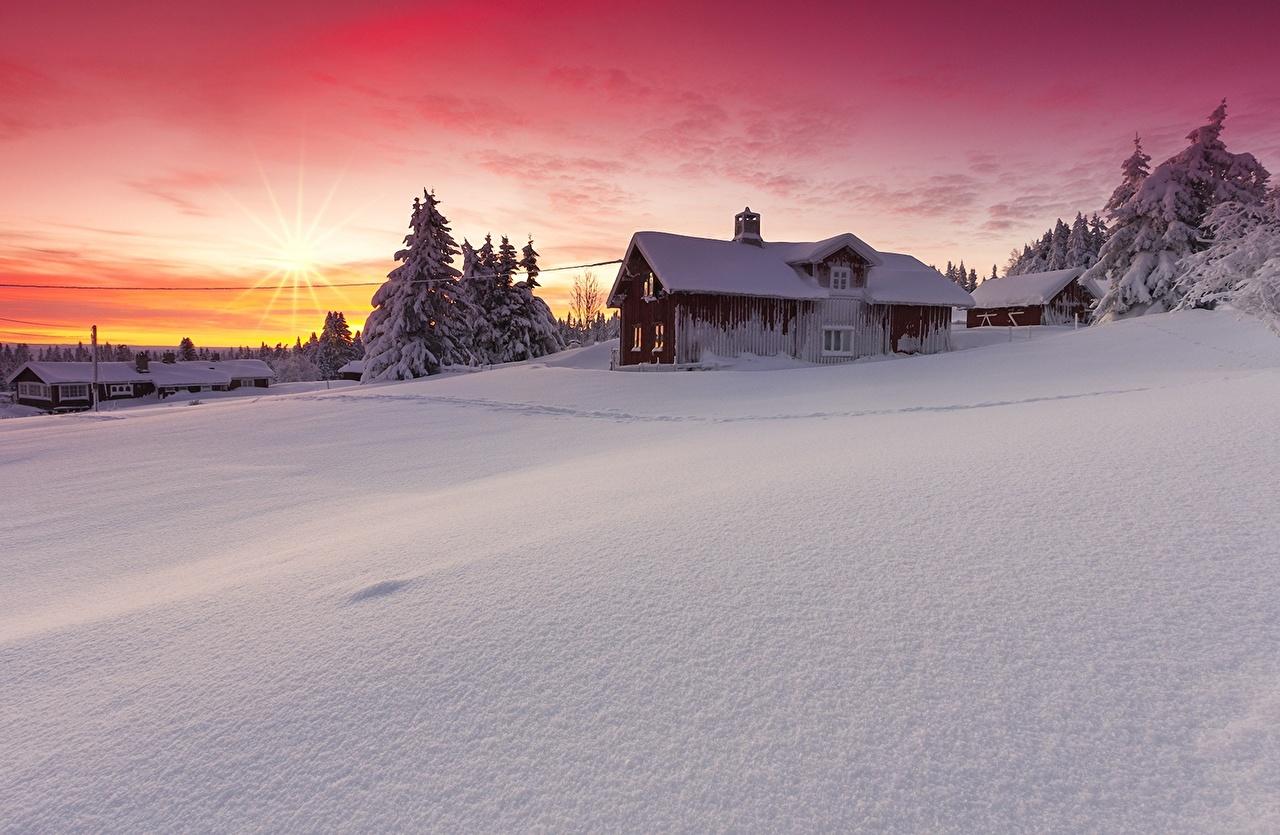Фото Природа снега рассвет и закат Дома дерева Снег снегу снеге Рассветы и закаты Здания дерево Деревья деревьев
