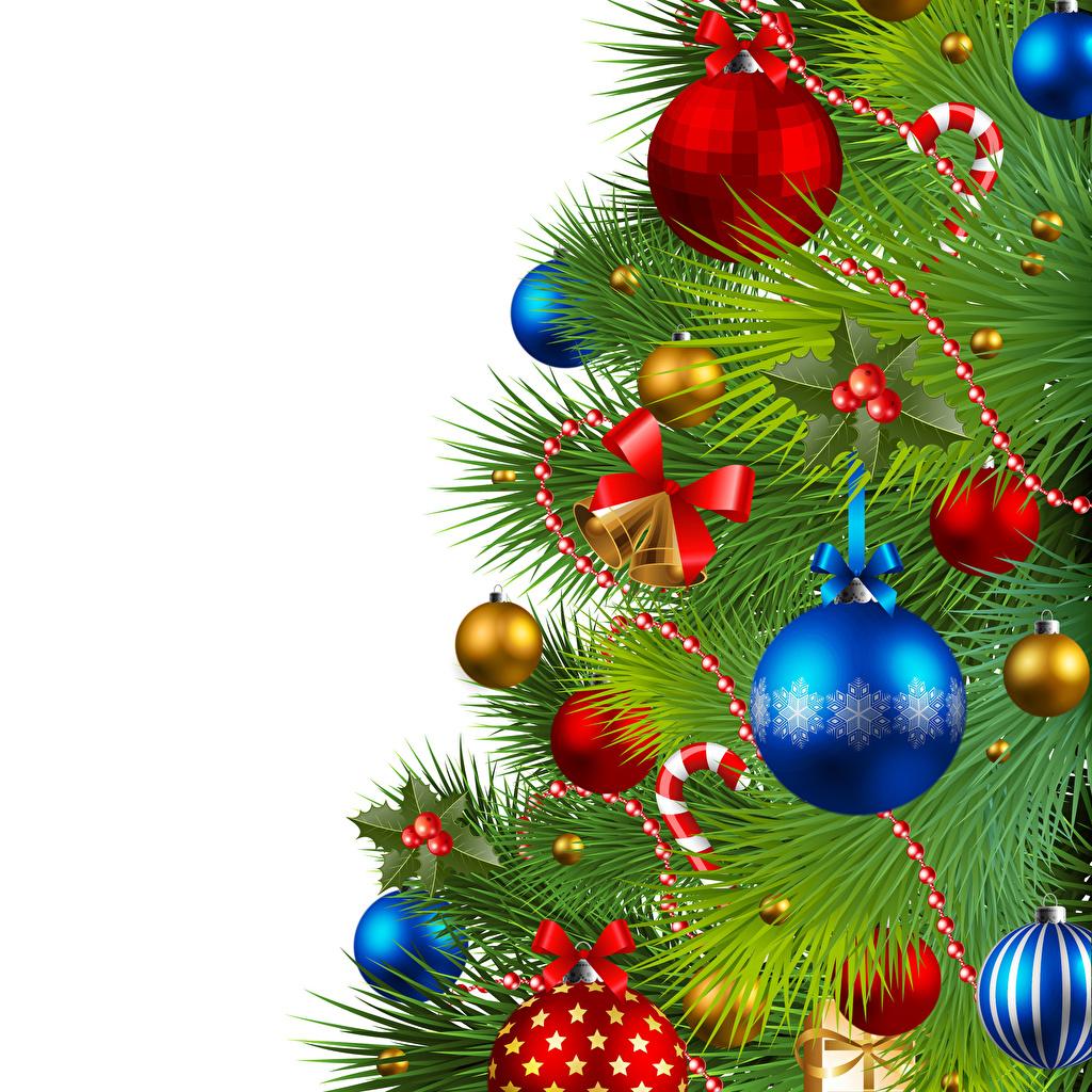 Фото Новый год Елка Шарики Бантик Шаблон поздравительной открытки белым фоном Векторная графика Рождество Новогодняя ёлка Шар бант бантики Белый фон белом фоне