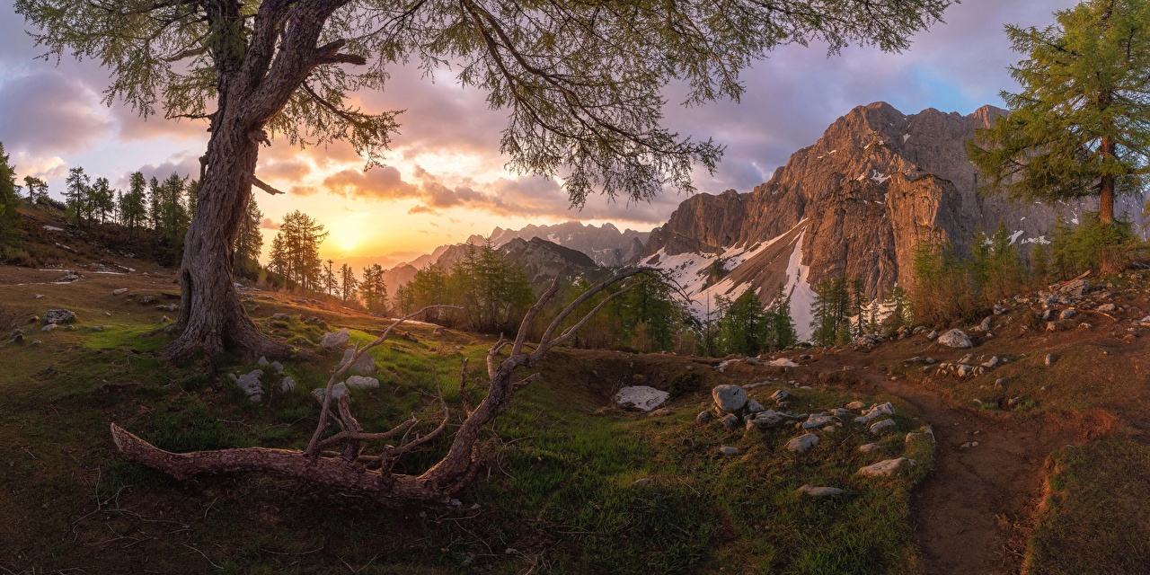 Фотография Словения Julian Alps, Slemenova Špica Plateau гора Природа Пейзаж Камни дерева Горы Камень дерево Деревья деревьев