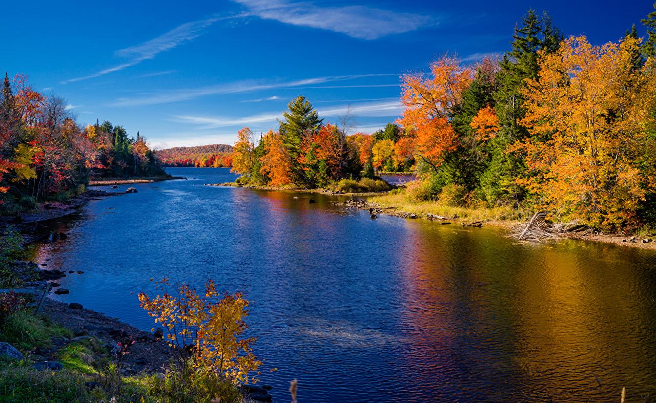 Фотография штаты Hamilton New York Осень Природа Леса Реки дерева США америка осенние лес река речка дерево Деревья деревьев