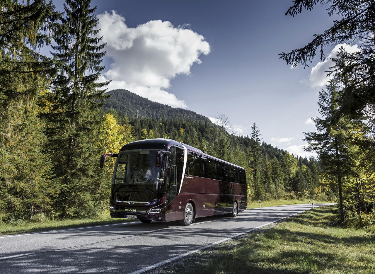 Фото Автобус 2017 MAN Lion's Coach C Бордовый Авто Металлик Машины Автомобили