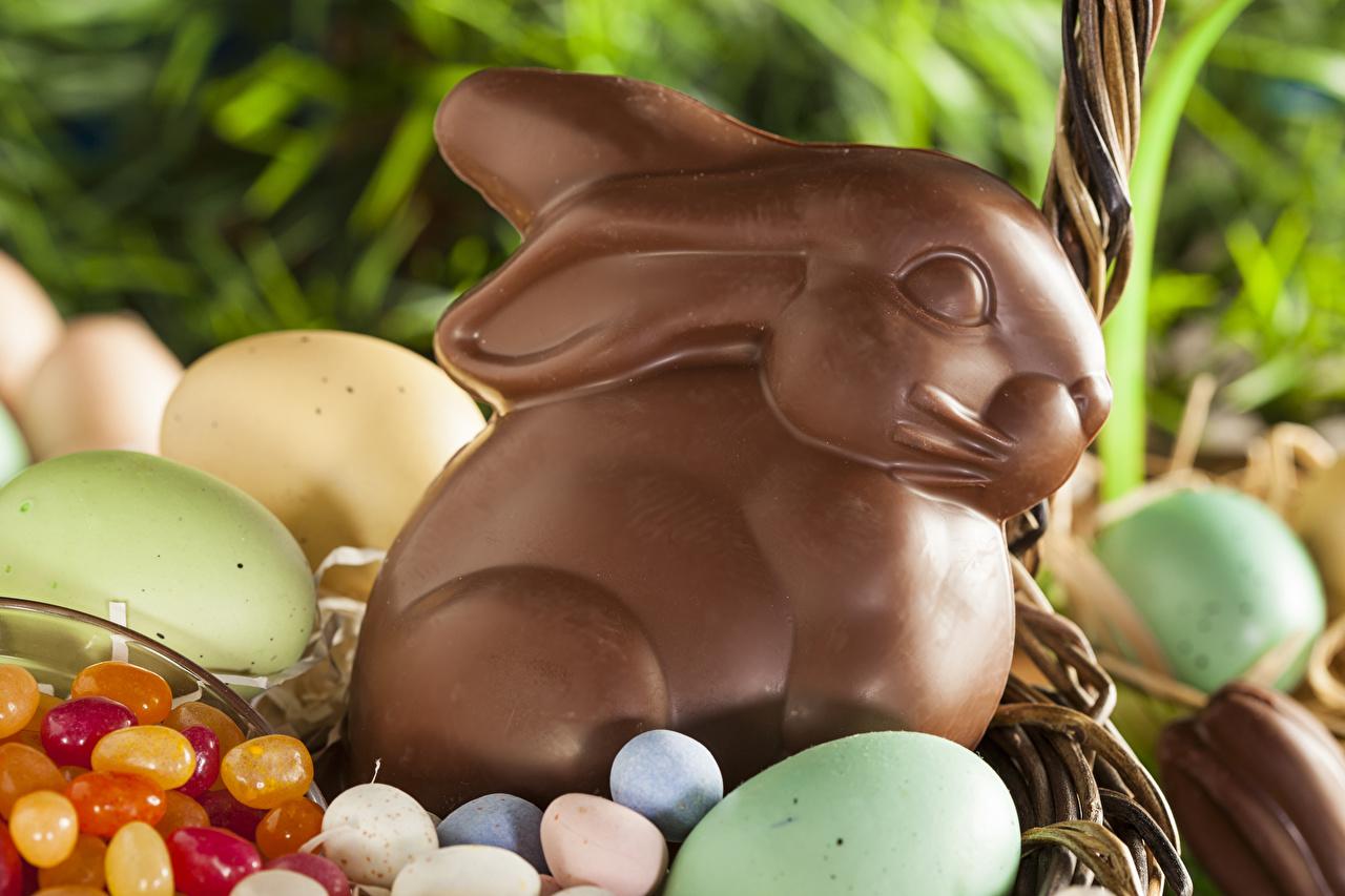 Фотографии Пасха кролик Яйца Шоколад Еда Праздники сладкая еда Кролики яиц яйцо яйцами Пища Продукты питания Сладости