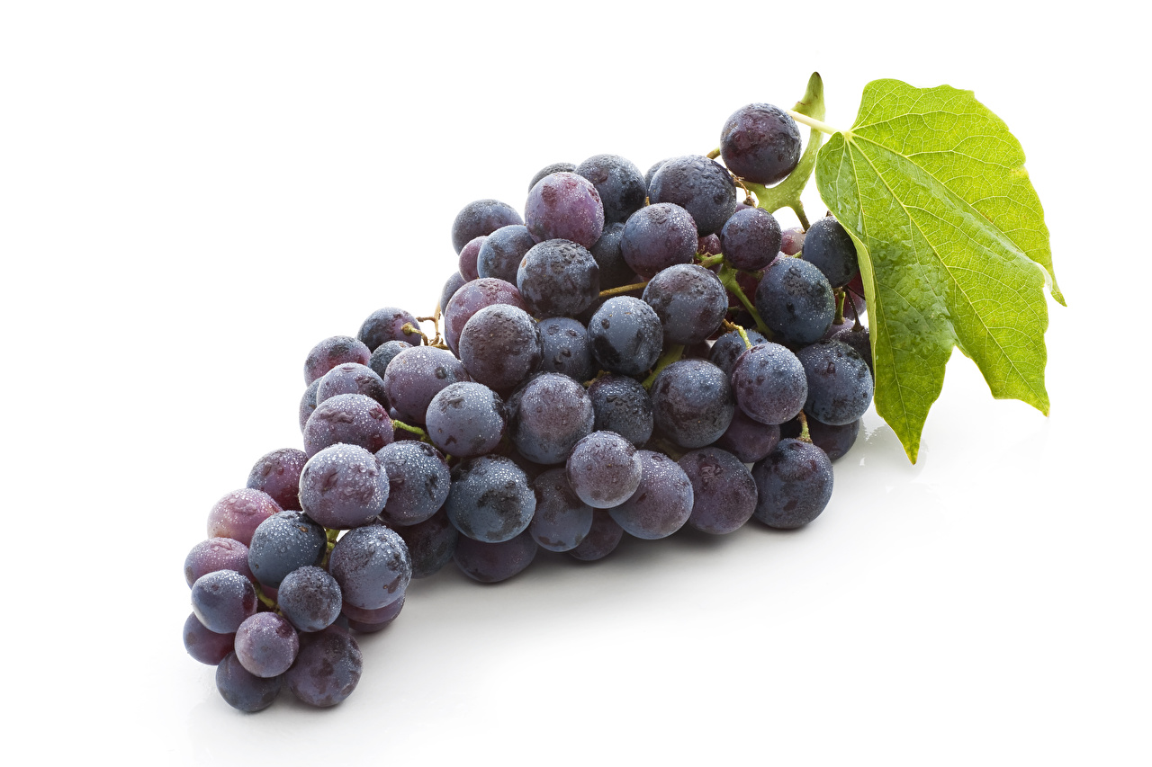 Фото Виноград Продукты питания Белый фон Еда Пища белом фоне белым фоном