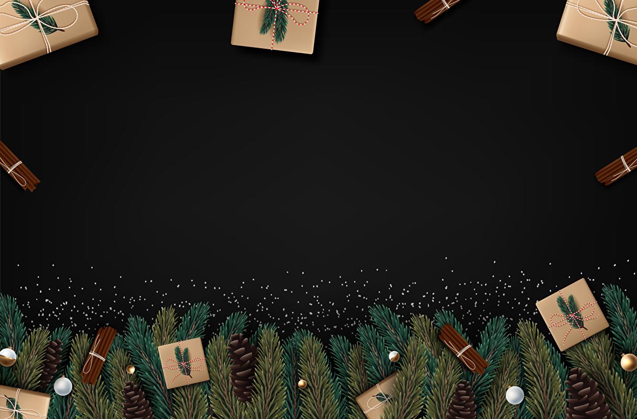 Фотография Новый год Корица подарков Шишки Ветки Шаблон поздравительной открытки Векторная графика Рождество подарок Подарки ветвь ветка шишка на ветке
