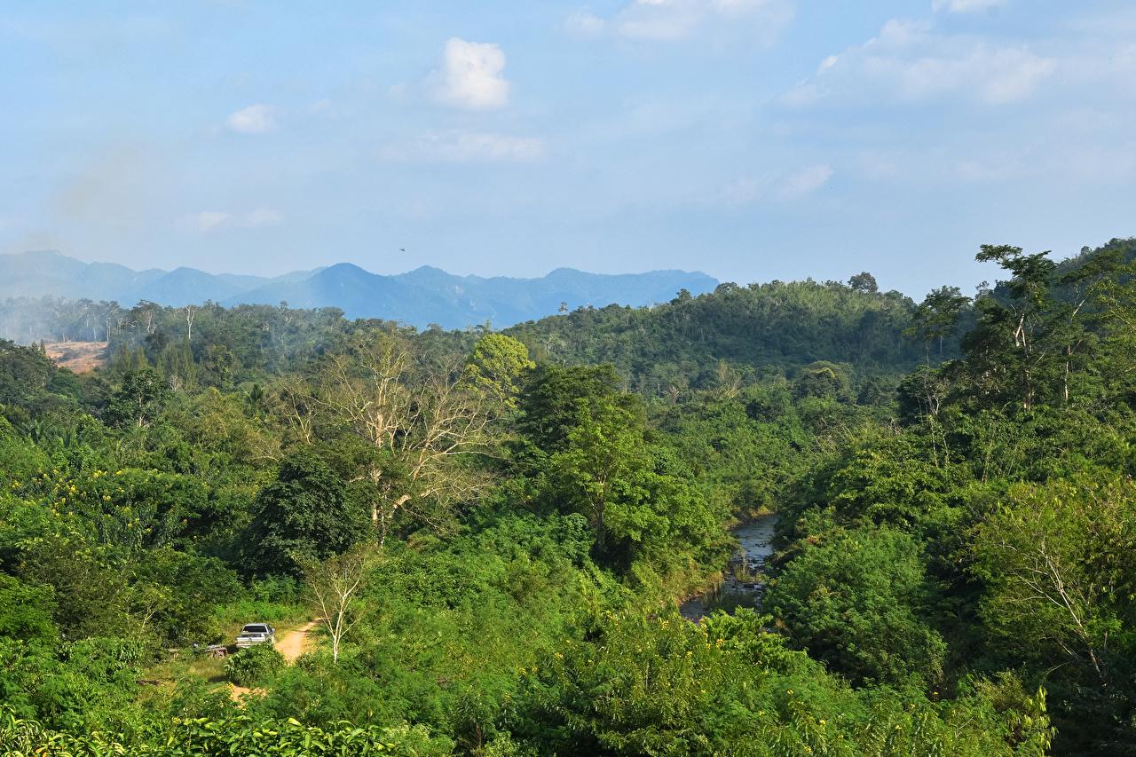 Обои для рабочего стола Таиланд Pala-U Waterfall Природа лес Парки парк Леса