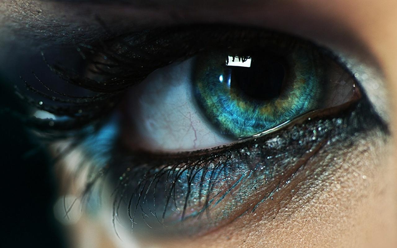 Обои Глаза Ресница Макро Крупным планом Макросъёмка вблизи