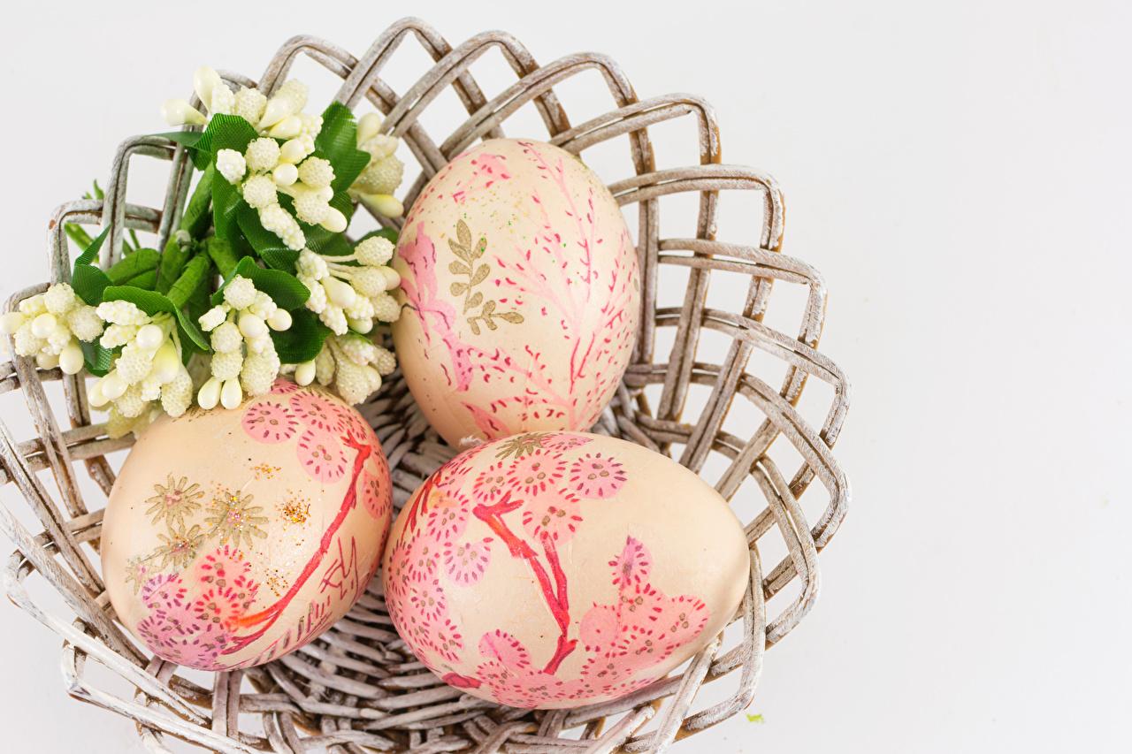 Картинка Пасха яйцо втроем Серый фон дизайна яиц Яйца яйцами три Трое 3 сером фоне Дизайн