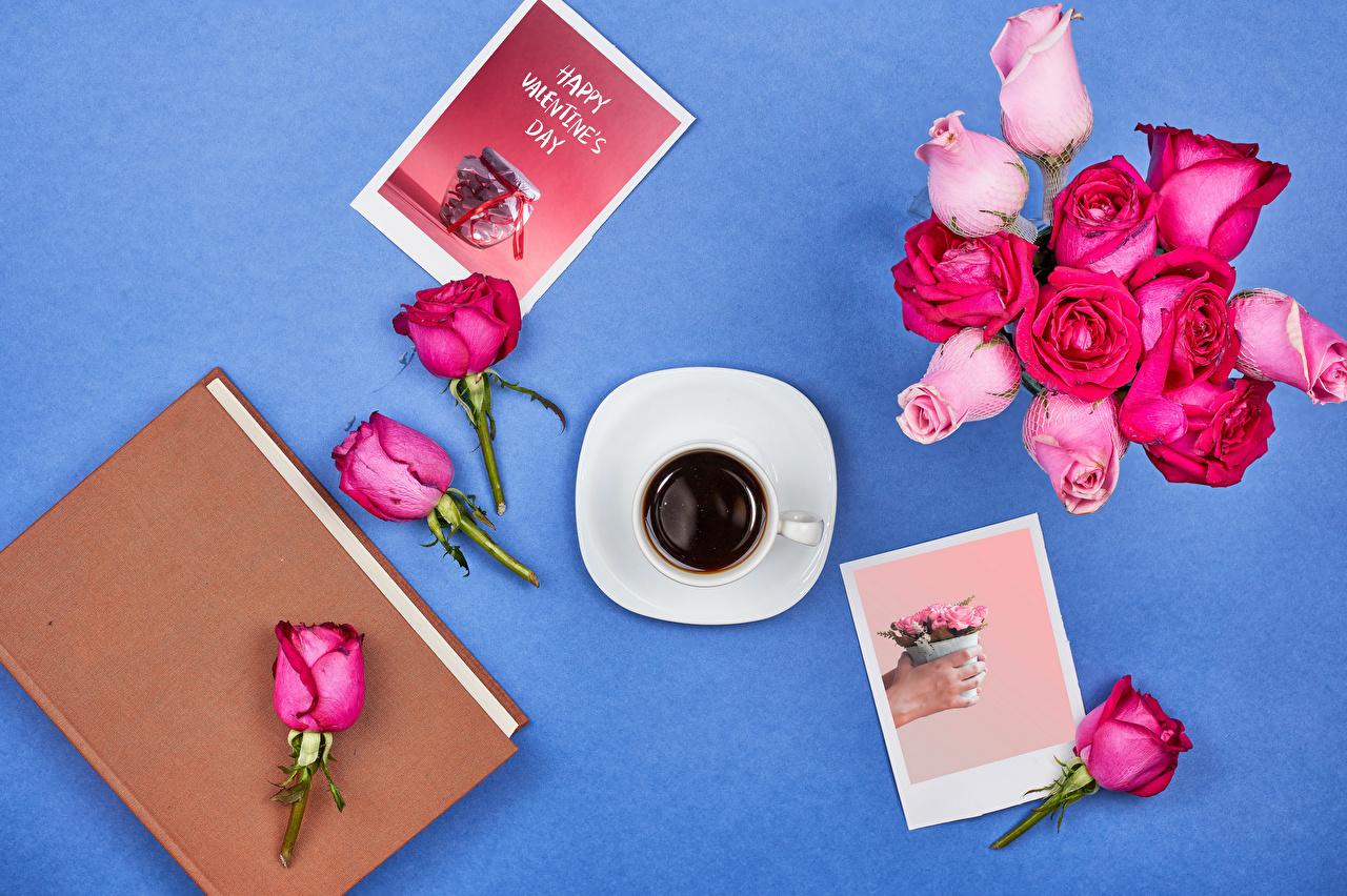 Картинка День святого Валентина Английский Розы Кофе розовая слова цветок Чашка книги Продукты питания Цветной фон День всех влюблённых английская инглийские роза Розовый розовые розовых Цветы текст Слово - Надпись Еда Пища чашке Книга