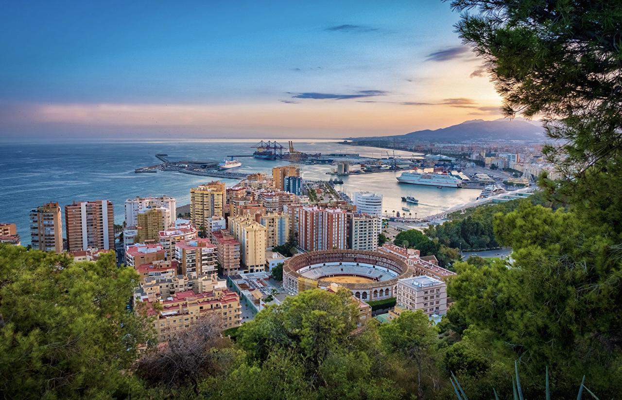 Фотографии Испания Malaga ветка Причалы Дома город Ветки Пирсы ветвь на ветке Пристань Города Здания