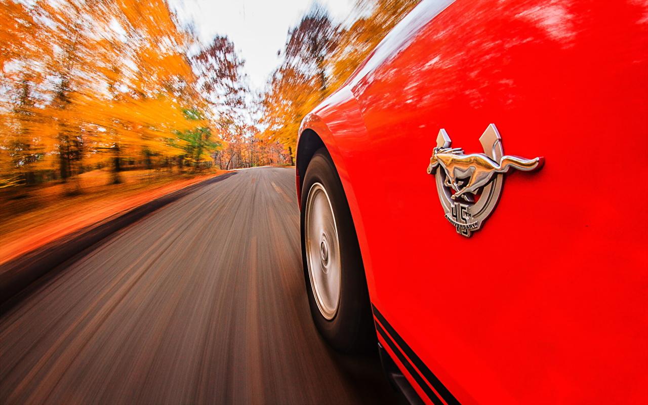 Картинка Форд Лошади Логотип эмблема Mustang осенние красных Дороги авто Ford лошадь Осень красная красные Красный машина машины Автомобили автомобиль