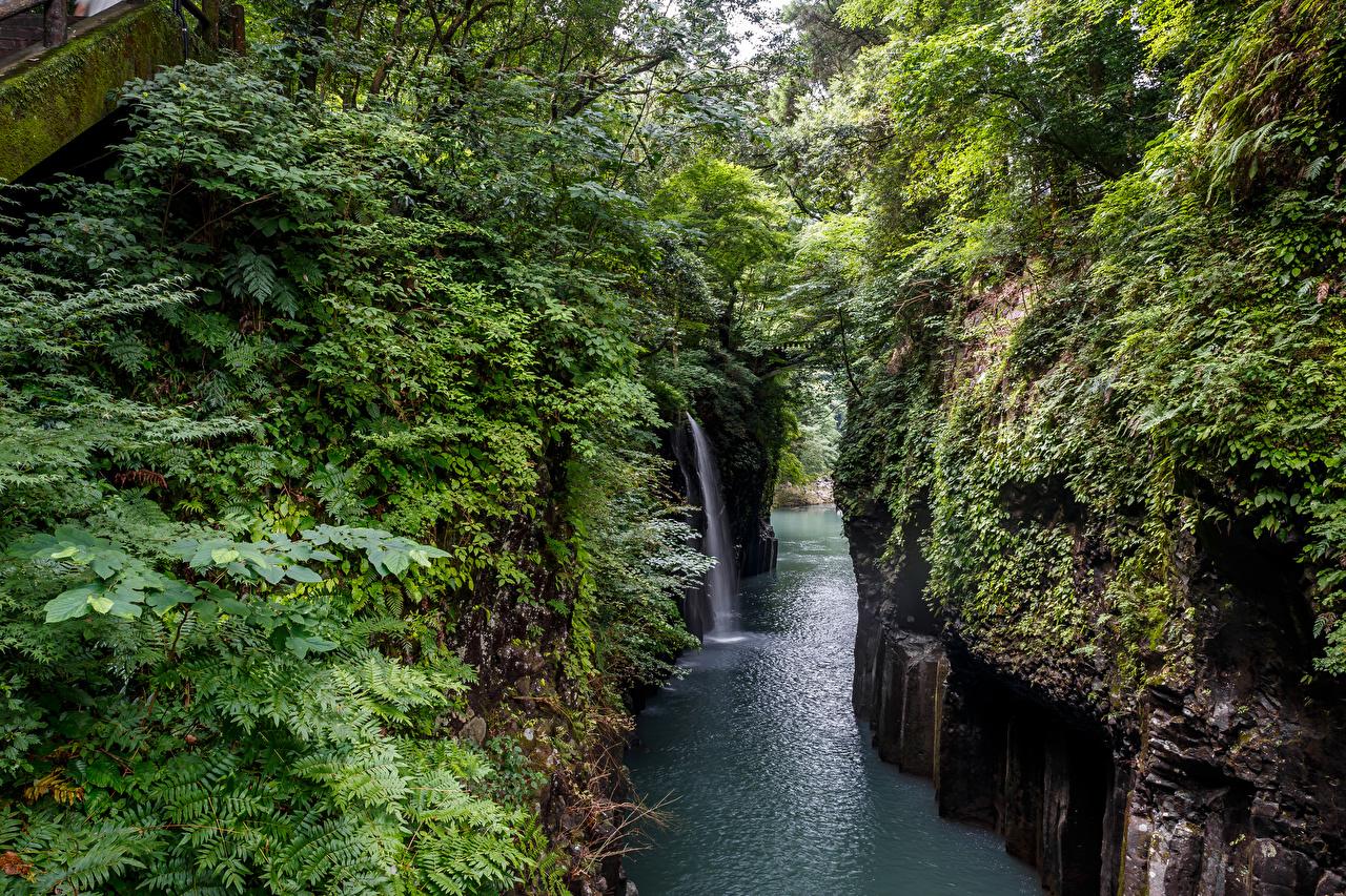 Фото Япония Takachiho Gorge Скала Природа Водопады река кустов Утес скалы скале Реки речка Кусты