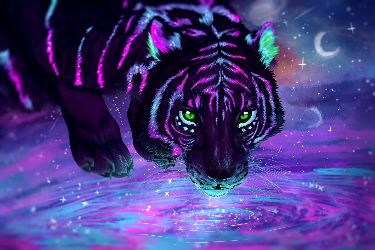 Звёздное небо и космос в картинках - Страница 2 Tigers_Painting_Art_Night_Glance_535374_1280x853
