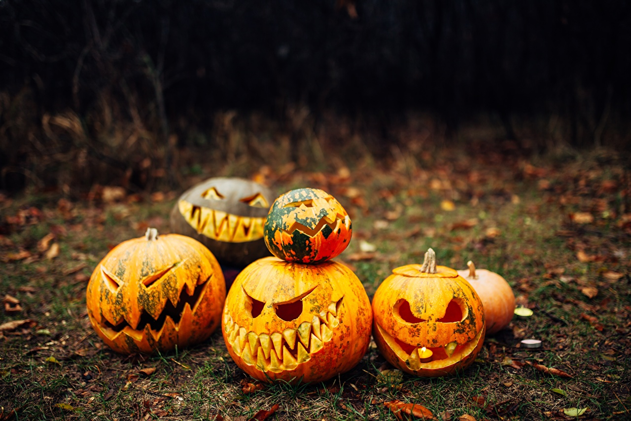 Картинка Тыква Хеллоуин Праздники хэллоуин