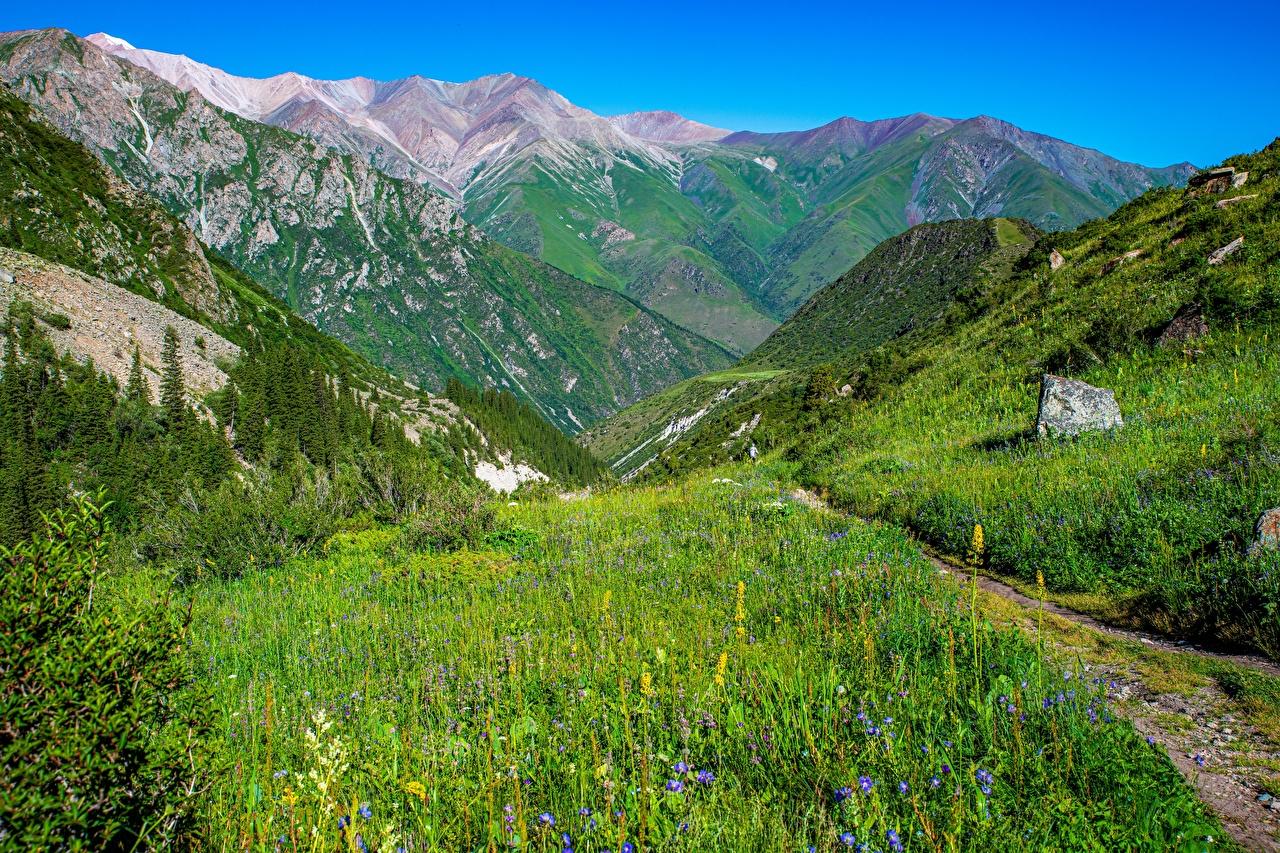 Фотографии Ala Archa National Park, Kyrgyzstan гора Тропа Природа парк Пейзаж Горы тропы тропинка Парки