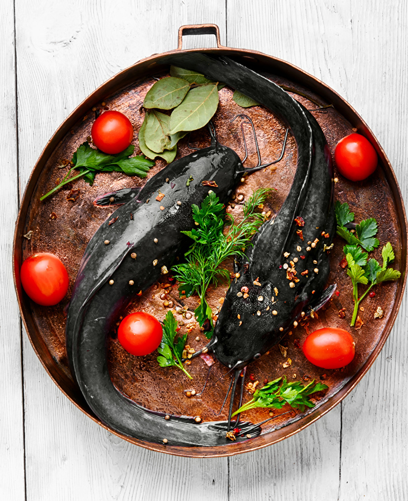 Фотографии Томаты Рыба Укроп Еда Специи Помидоры Пища пряности приправы Продукты питания