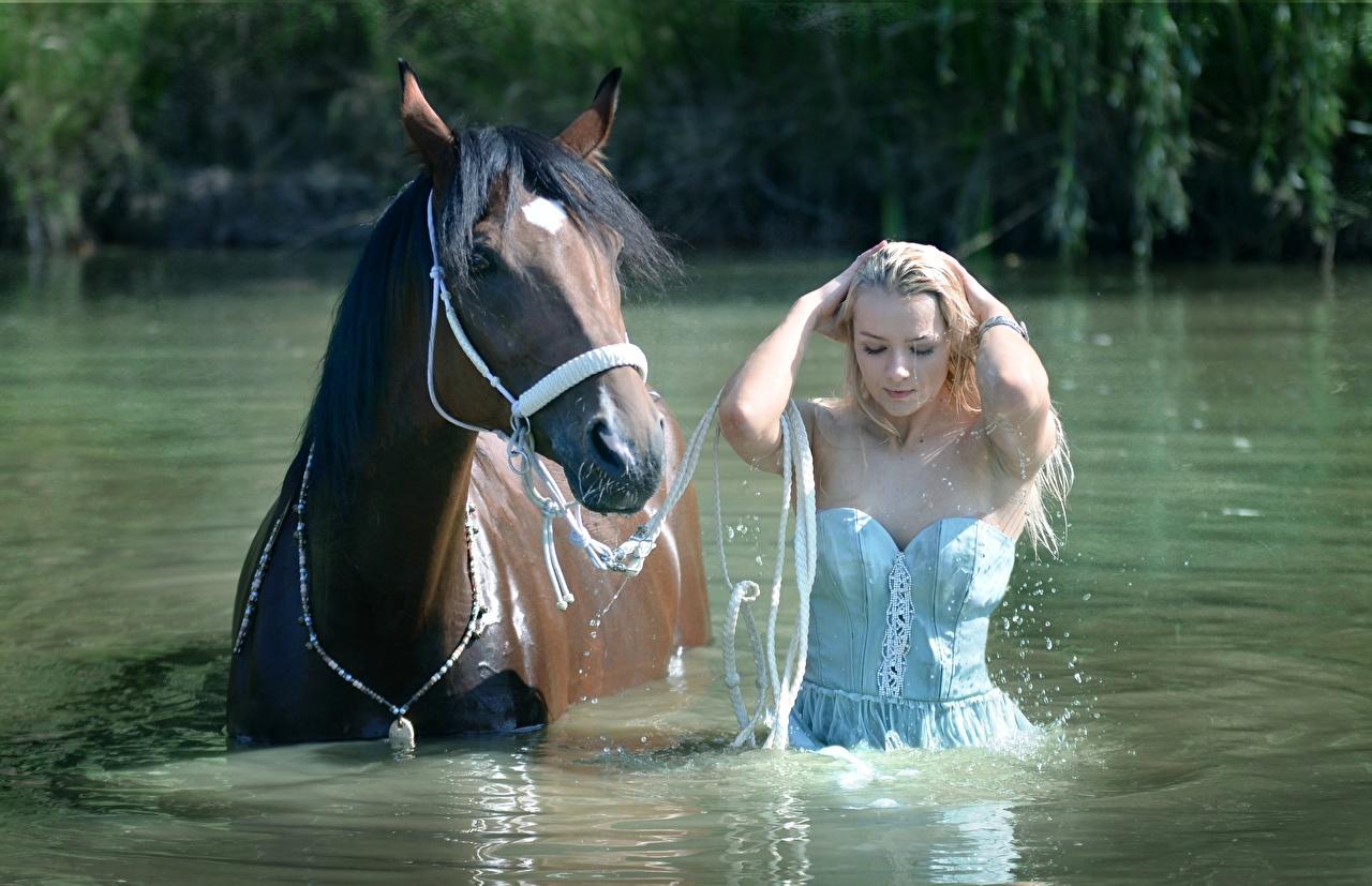 Фотографии Лошади блондинок Красивые Девушки воде Мокрые лошадь блондинки Блондинка красивая красивый девушка молодая женщина молодые женщины Вода влажные