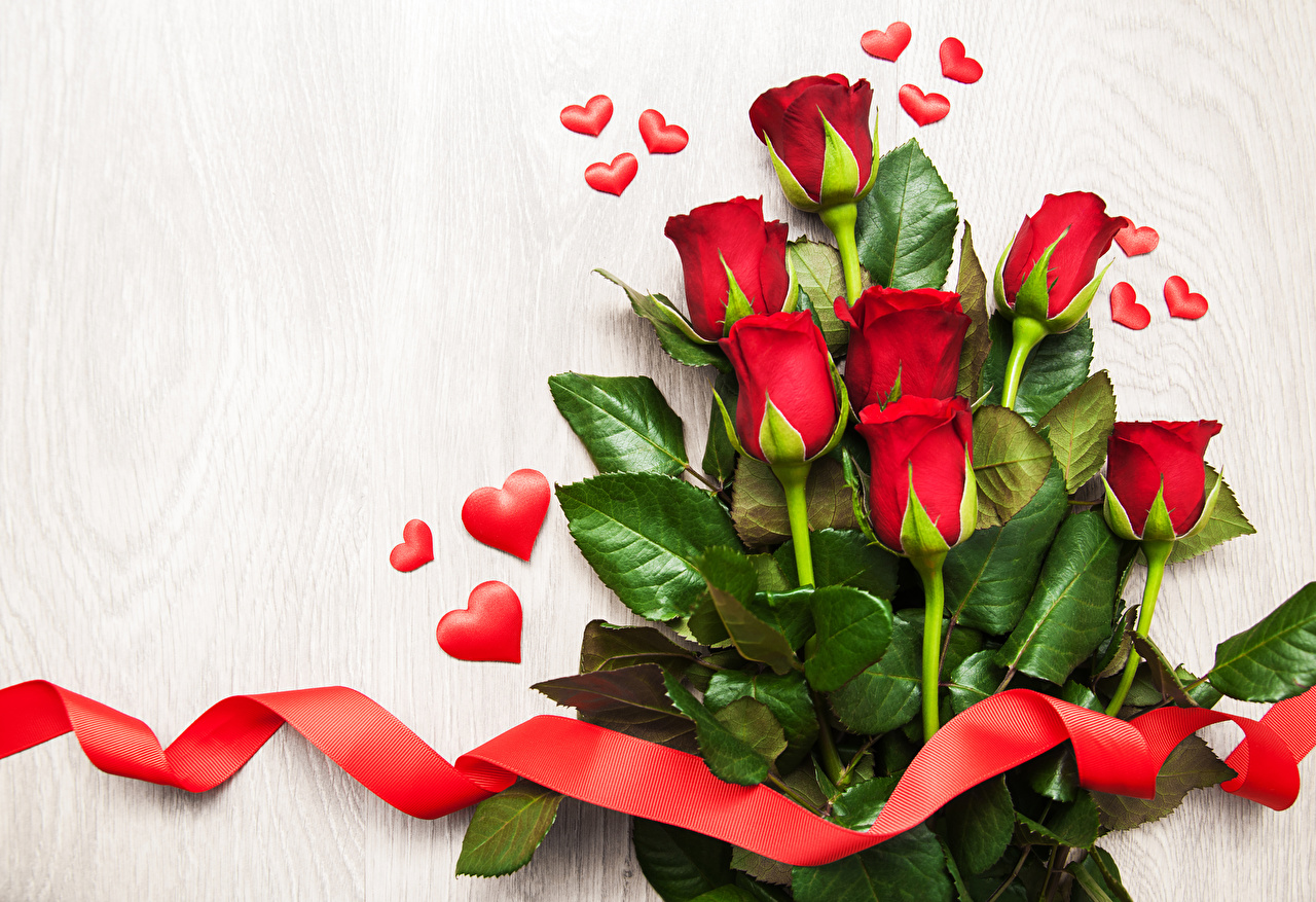 Розы Белый фон Красный Сердце Лента ленточка, сердечко Цветы