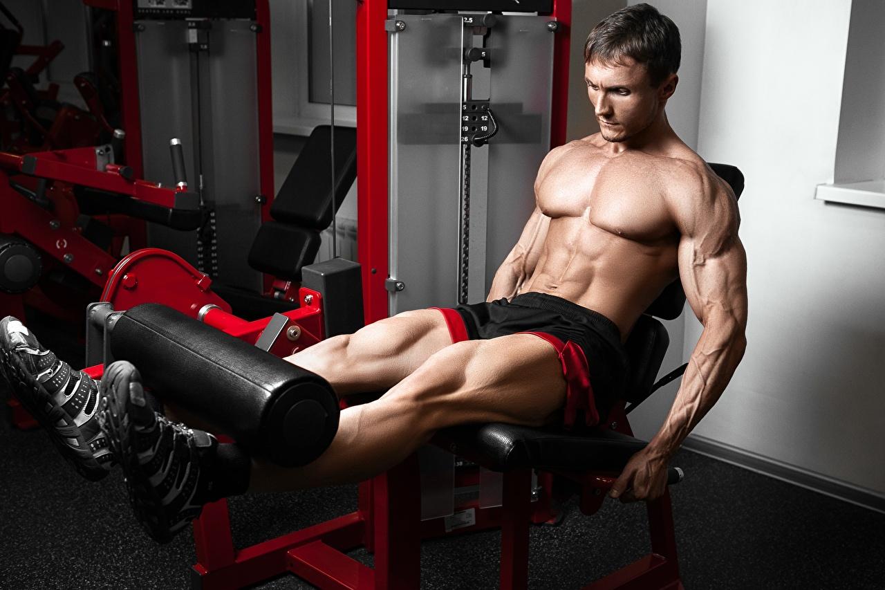 Фотография мужчина мускулы Спортзал физическое упражнение Спорт Ноги Бодибилдинг Руки живота Мышцы Мужчины спортзале Тренировка тренируется спортивный зал спортивные спортивная спортивный ног рука Живот