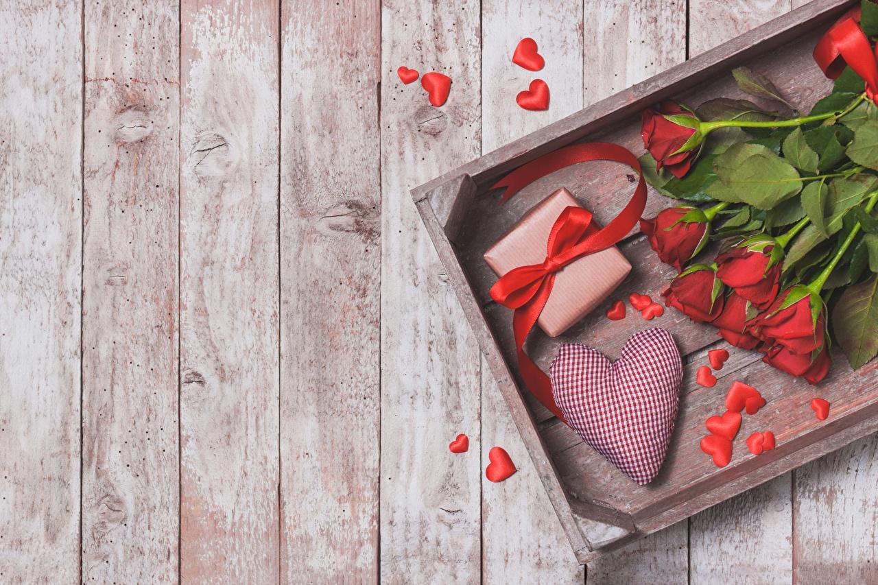 Фотография День святого Валентина сердечко роза Цветы Доски День всех влюблённых серце сердца Сердце Розы цветок
