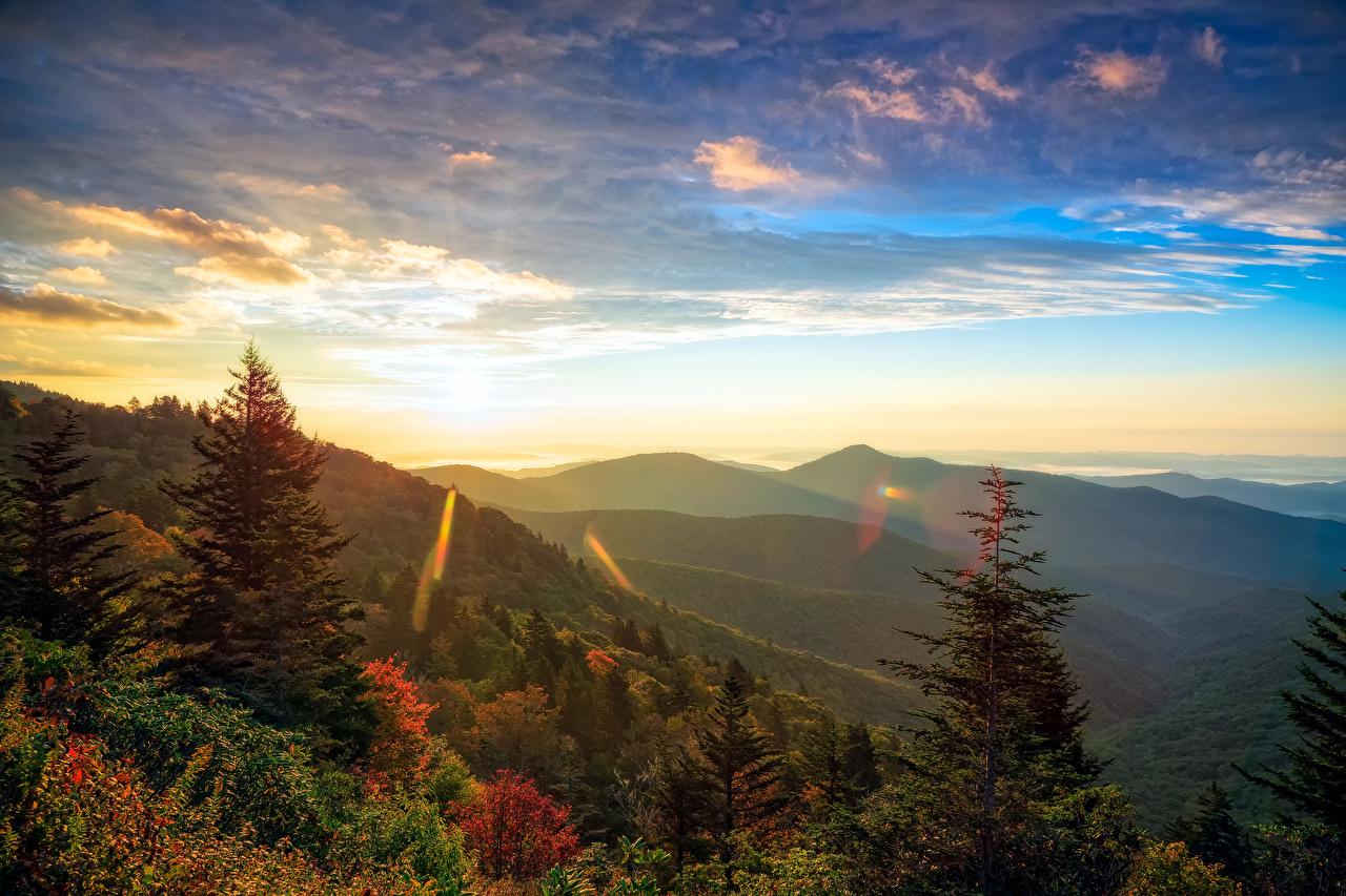 Фотография США Transylvania North Carolina Ель Горы Природа Леса Пейзаж рассвет и закат штаты америка ели гора лес Рассветы и закаты