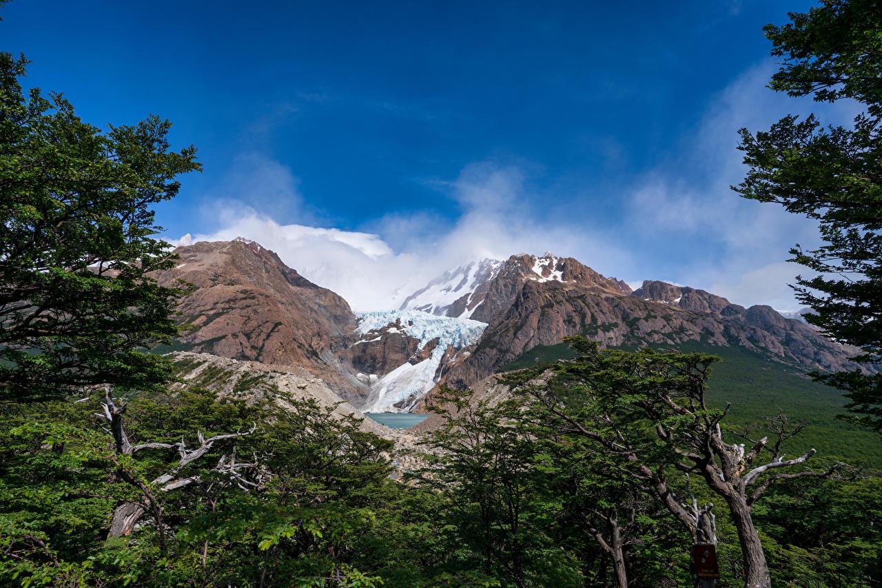 Картинка Аргентина Patagonia гора Природа Небо Деревья Горы дерево дерева деревьев