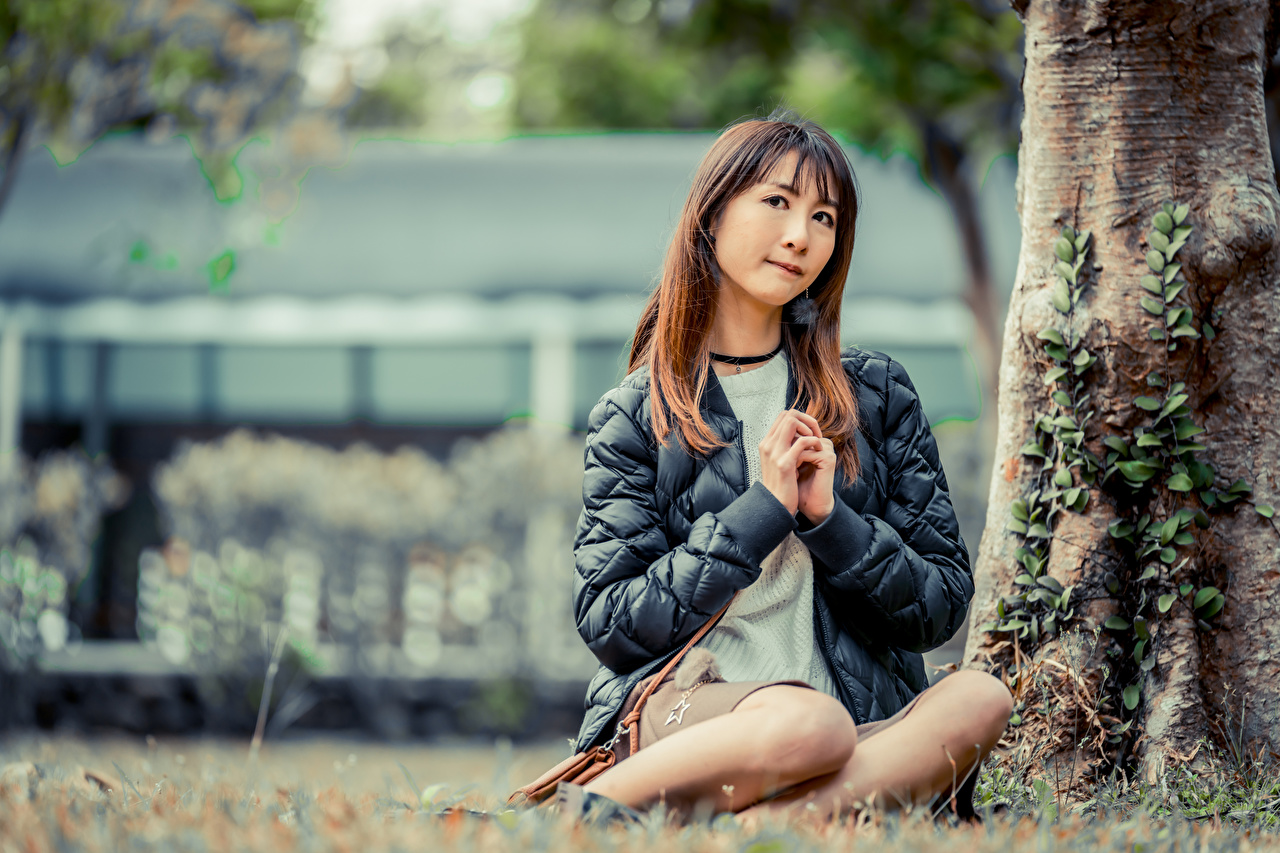 Фотография Размытый фон Куртка молодые женщины азиатки Ствол дерева рука Сидит боке куртке куртки куртках девушка Девушки молодая женщина Азиаты азиатка Руки сидя сидящие