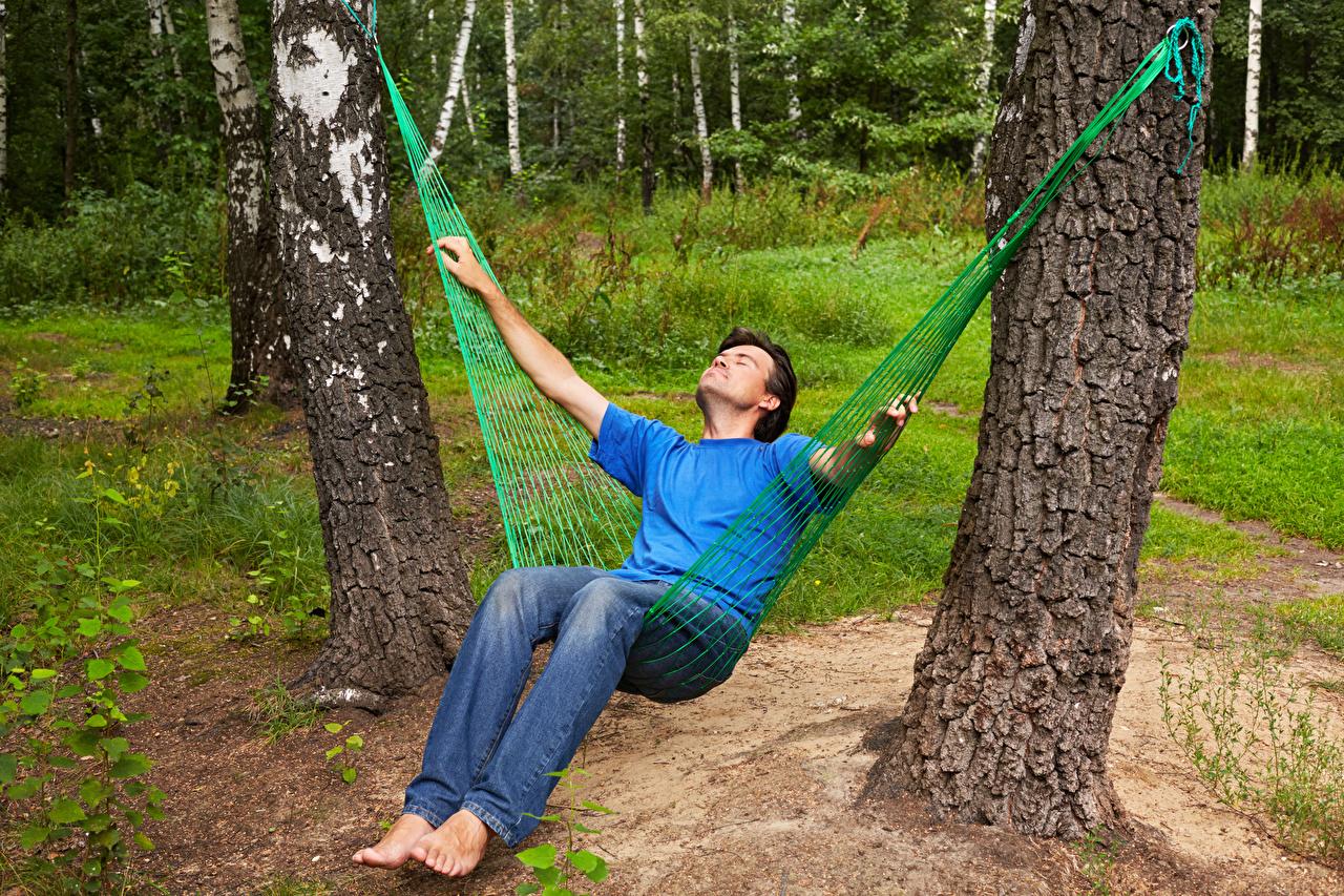 Фото гамаке Мужчины релакс Ствол дерева Гамак мужчина Отдых отдыхает