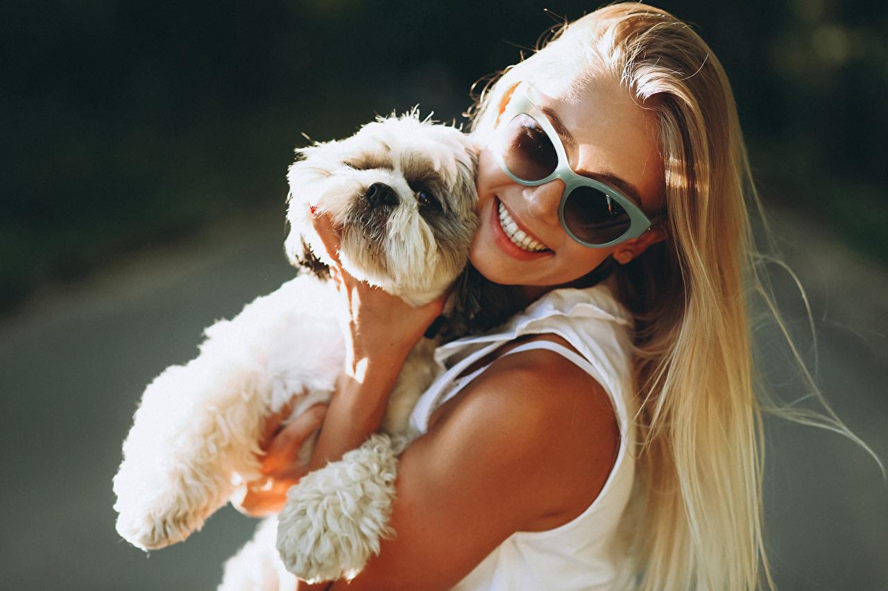 Фото щенка собака блондинки Улыбка Девушки очков щенки Щенок щенков Собаки Блондинка блондинок улыбается девушка молодая женщина молодые женщины Очки очках