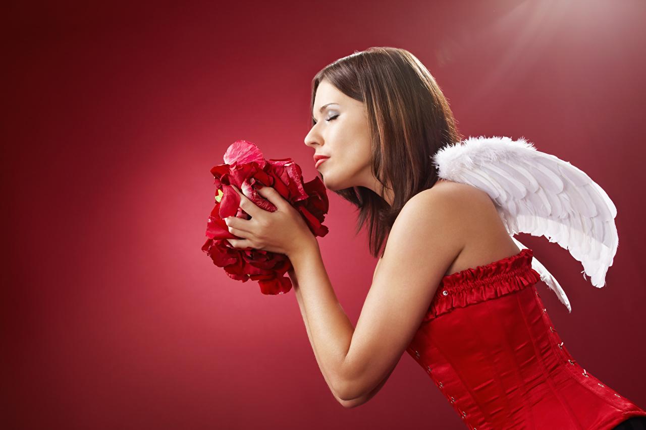 Фотографии Корсет шатенки Крылья Лепестки молодые женщины ангел Руки Сбоку Красный фон Шатенка в корсете девушка Девушки лепестков молодая женщина Ангелы рука красном фоне