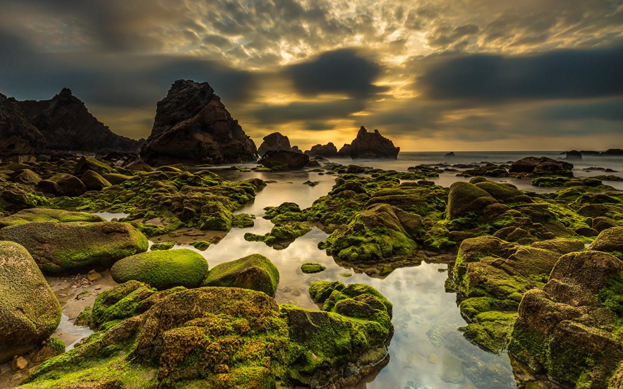 Картинка Португалия Praia da Ursa Sintra Утес Природа Небо Мох Вечер Камни берег Облака Скала Камень Побережье