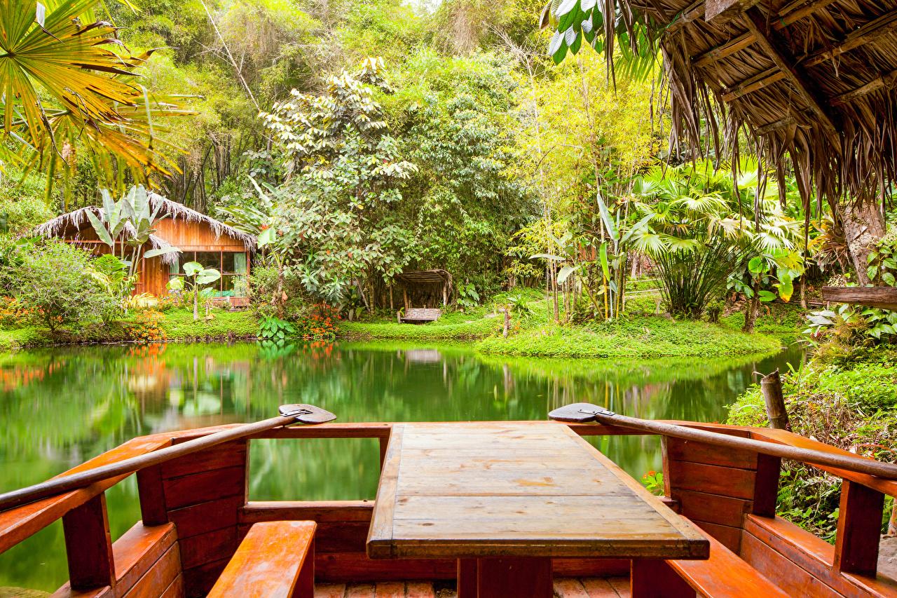Обои для рабочего стола Природа Пруд Парки тропический столы Дома кустов парк Тропики Стол стола Кусты Здания