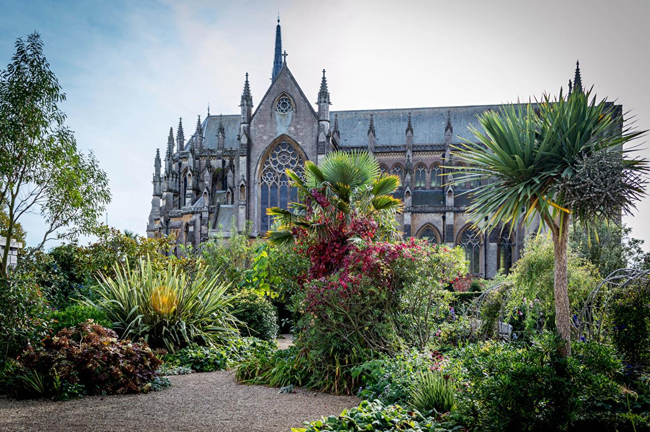Фотографии Англия Arundel Castle and Gardens Замки Сады пальм Кусты Города замок Пальмы пальма город кустов
